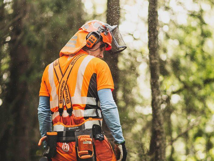 Trädfällning inför markarbete